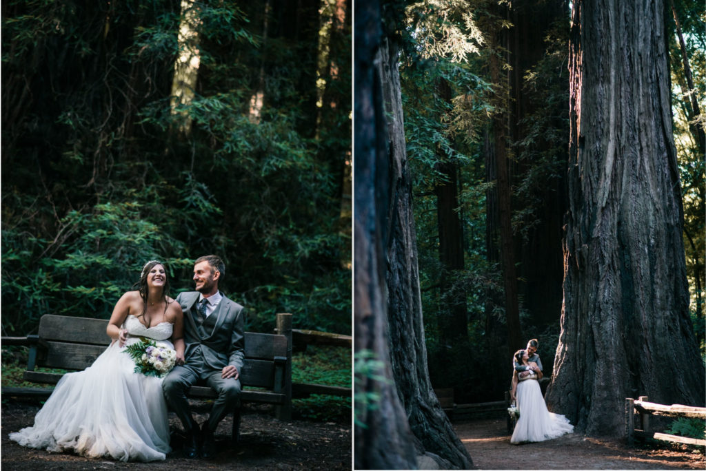 henry cowell state park redwoods wedding