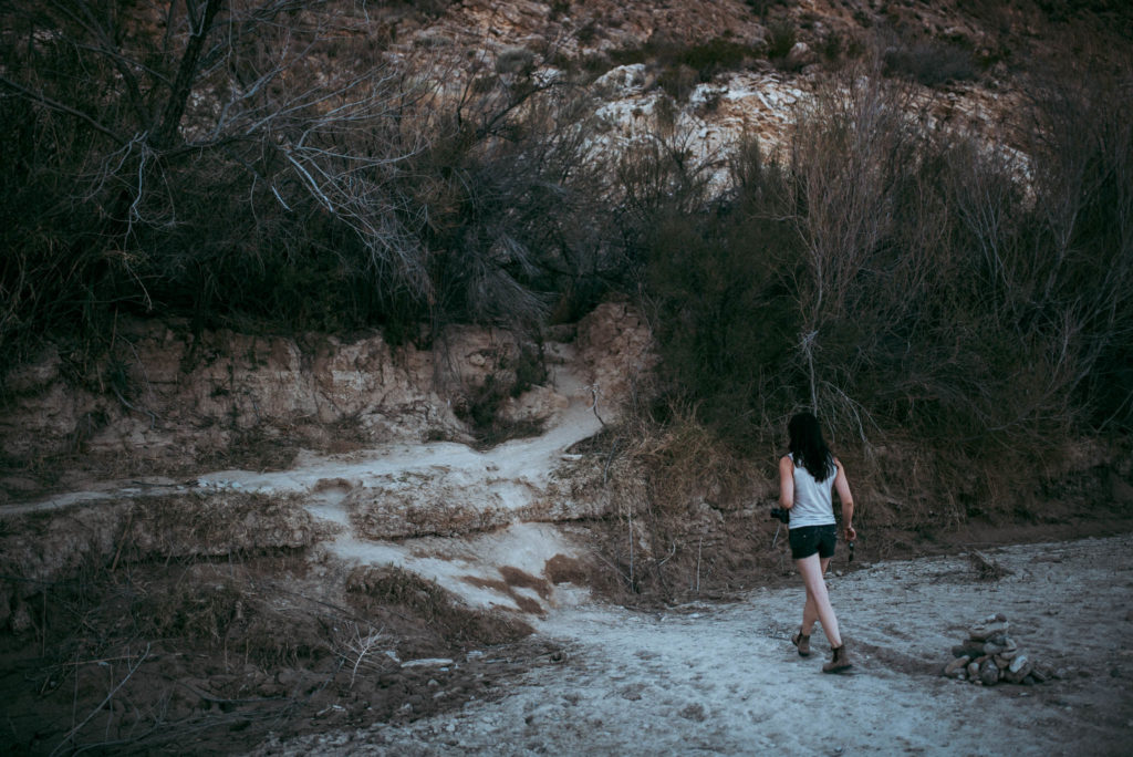 The Foxes Photography Marfa Big Bend Wedding Elopement Engagement Photographers