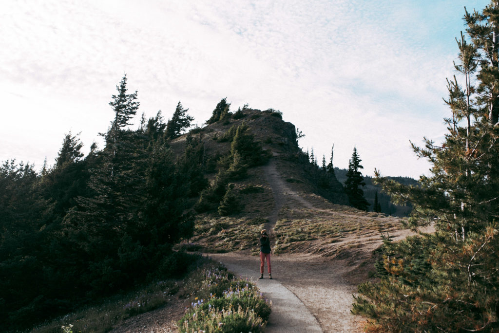 Hurricane Ridge Elopement Scouting in Olympic National Park, Washington.