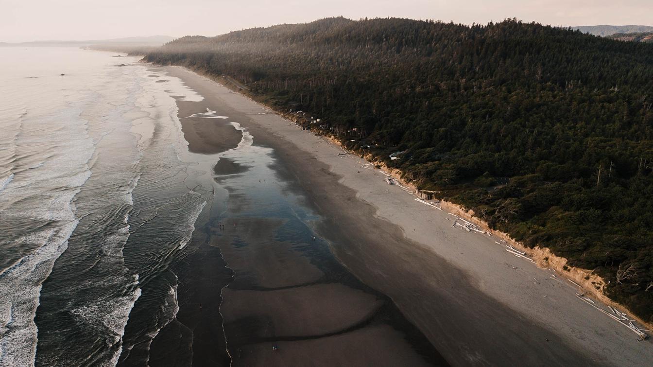 Kalaloch Beach Elopement Scouting