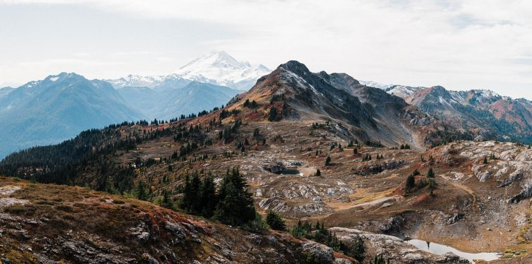 Yellow aster butte trail elopement photography
