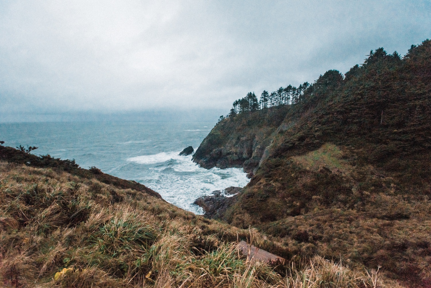 Cape_Disappointment_Engagment_Kailey_Alex_The_Foxes_Photography_132.jpg