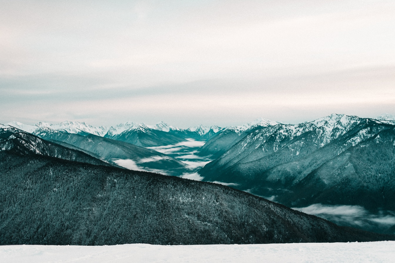Hurricane Ridge Snow Elopement