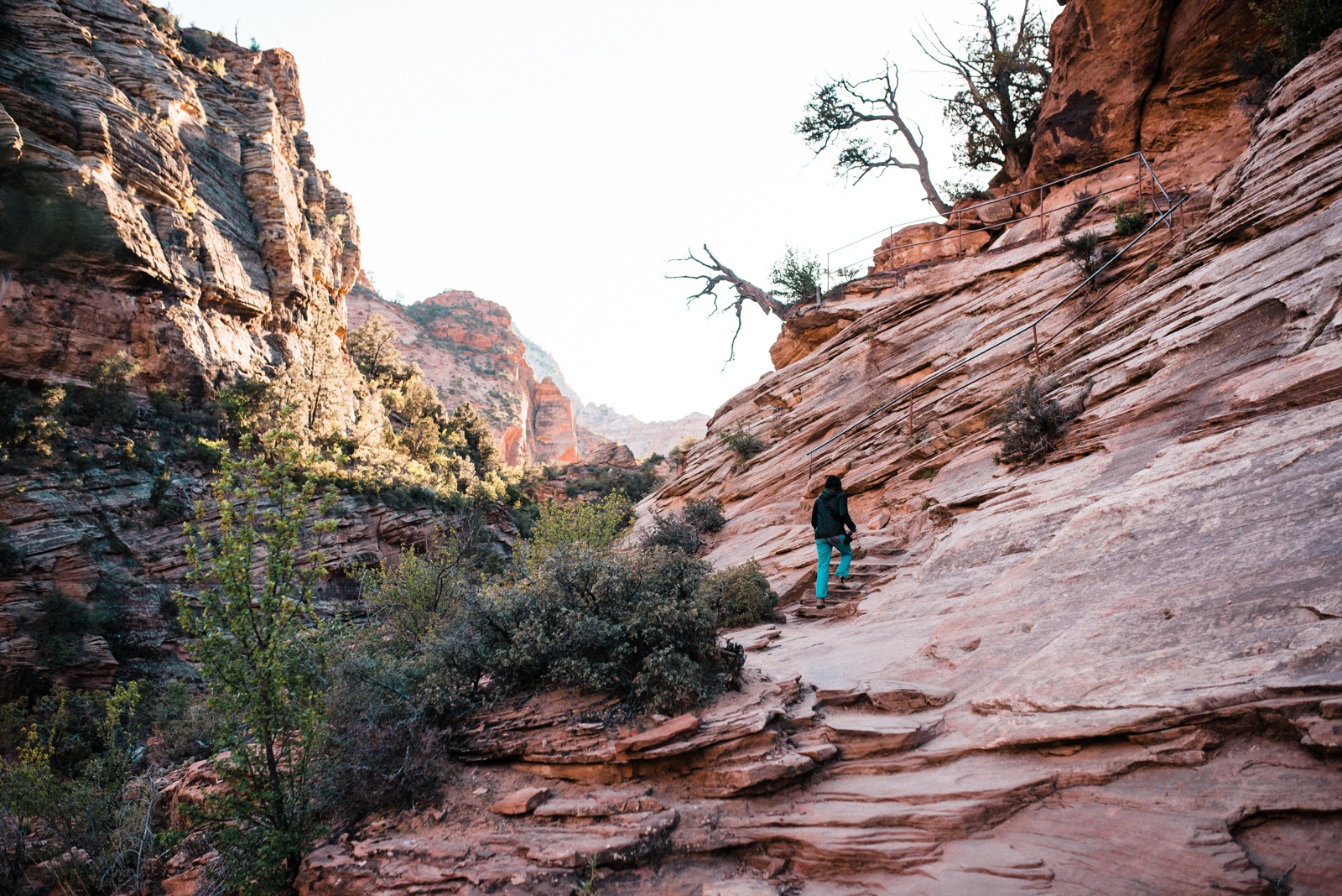 Zion Canyon Overlook Trail