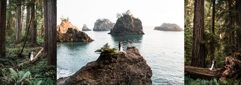Redwood Forest Wedding and Ocean Cliff Elopement