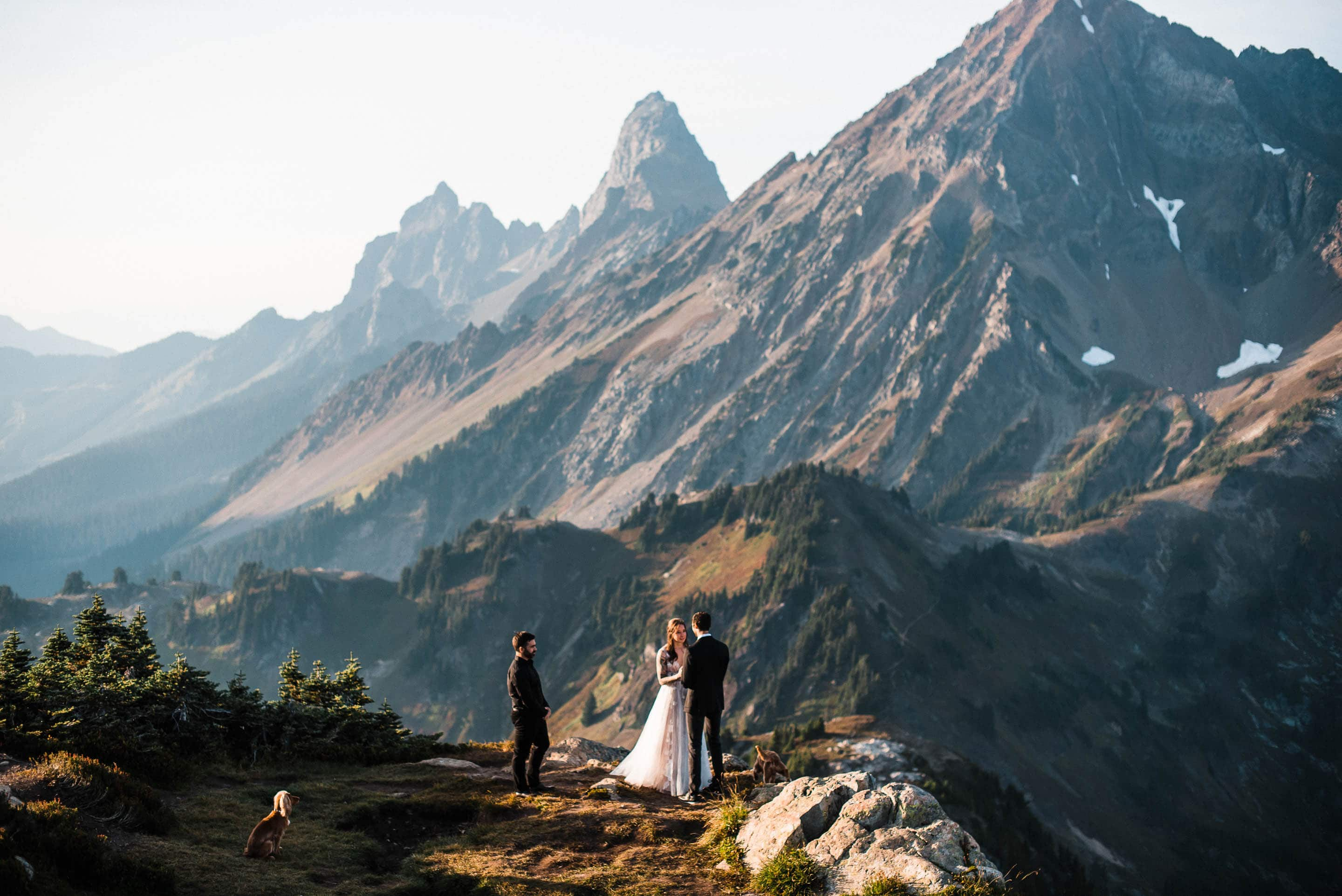 Thea_Lucas_North_Cascades_Elopement_The_Foxes_Photography_093Fox harsh_50mm_f2.5-2000_ISO100_One click