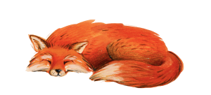 The Foxes Photography Logo Drawing 4