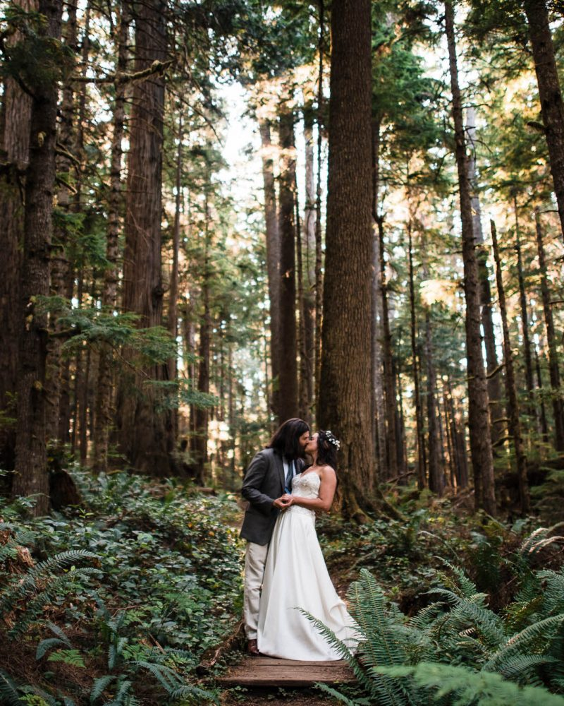 Salley_Randy_Hurricane_Ridge_Elopement_Teasers_The_Foxes_Photography_02